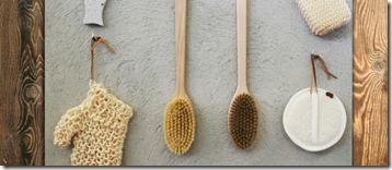 Dry_Brushing-700x300